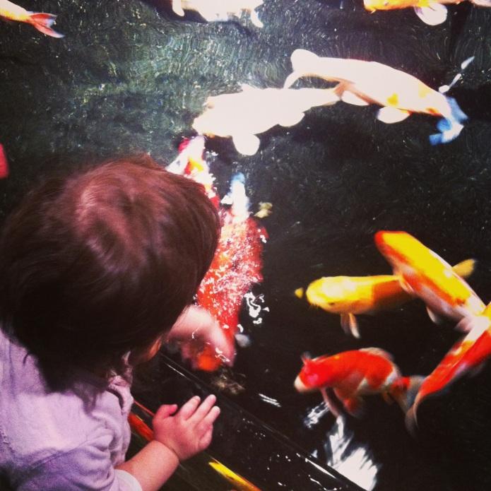 aquariumparis10